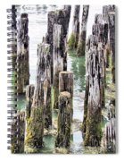 Old Dock Remains Spiral Notebook
