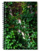 Old Fence Post Spiral Notebook