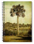 Old Florida Palm Spiral Notebook