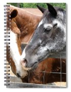 Old Friends Are The Best Friends Spiral Notebook