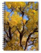 Old Giant  Autumn Cottonwood Spiral Notebook