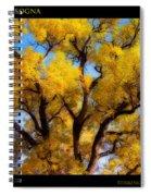 Old Giant  Autumn Cottonwood Orton Spiral Notebook