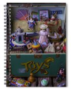 Old Green Toy Box Spiral Notebook