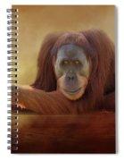Old Man Orangutan Spiral Notebook