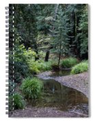 Old Mill Park In Mill Valley 2 Spiral Notebook