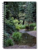 Old Mill Park In Mill Valley Spiral Notebook