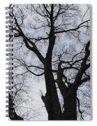 Old Oak Overcast Spiral Notebook