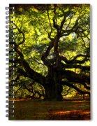 Old Old Angel Oak In Charleston Spiral Notebook