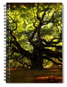 Old Old Angel Oak In Charleston Spiral Notebook