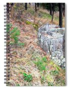Old Pine Stump Spiral Notebook
