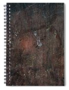 Old Plastered And Painted Wall Spiral Notebook