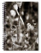 Old Poppies Spiral Notebook
