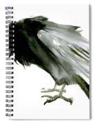 Old Raven Spiral Notebook