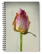 Old Rose On Paper Spiral Notebook