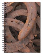 Some Old Shoes Spiral Notebook
