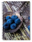 Old Spoon And Blueberries Spiral Notebook