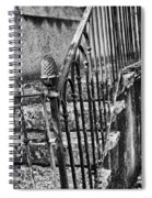 Old Steps And Railings Spiral Notebook