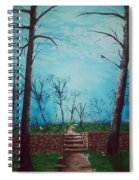 Old Steps To The Horizon Spiral Notebook