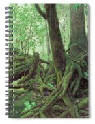 Old Tree Root Spiral Notebook
