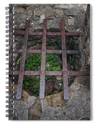 Old Well Spiral Notebook