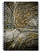 Old Wood 1 Spiral Notebook