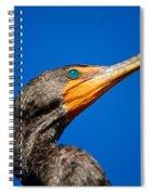 Blue Stare Spiral Notebook