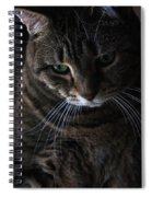 Ole Green Eyes Spiral Notebook
