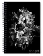 Oleander Flowers In Black And White 2 Spiral Notebook