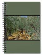 Olive Spiral Notebook