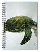 Olive Ridley Turtle Spiral Notebook