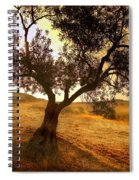 Olive Tree Dawn Spiral Notebook