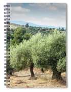 Olive Trees Hill Spiral Notebook