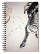 Oliver And Fury Commission Spiral Notebook