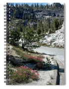 Olmsted Down The Road View Spiral Notebook