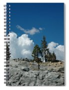 Olmsted Point Pine Rear View Spiral Notebook