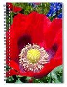 Olympia Poppy Spiral Notebook