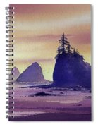Olympic Seashore Spiral Notebook