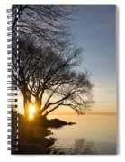 On Fire - Bright Sunrise Through The Willows Spiral Notebook