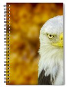 On Fire The American Bald Eagle Spiral Notebook