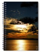 Golden Moments Spiral Notebook