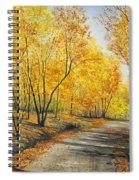 On Golden Road Spiral Notebook