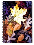 On The Forest Floor Vivid Colors Spiral Notebook