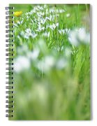 On The Garden Path Spiral Notebook