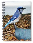 On The Look Out  Spiral Notebook