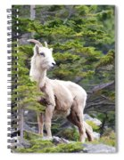 On The Lookout Spiral Notebook