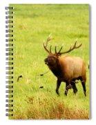 On The Range Spiral Notebook