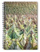 On The Stick Spiral Notebook