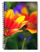 On The Sunny Side... Spiral Notebook