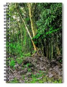 On The Way To Lava Tree Aloha Spiral Notebook