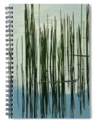 On The Way To Tractor Supply 3 1 Spiral Notebook